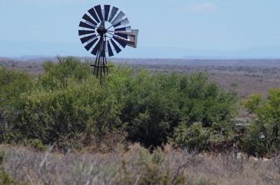 Die Brunnen in der Karoo werden durch Windräder betrieben. Oft sind es die einzigen Wasserstellen für die Tiere weit und breit
