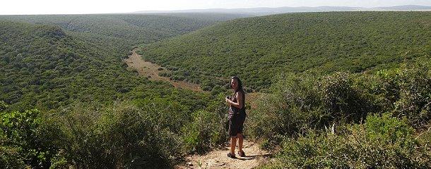 Tierpfade in den Tälern des Addo-Nationalparks