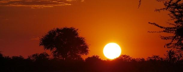 Wieder ein malerischer Sonnenuntergang in Afrika, hier im Etosha - Park