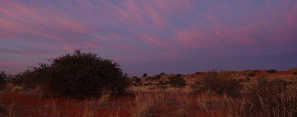 Die blaue Stunde kurz vor Sonnenaufgang hat auch Einiges zu bieten.