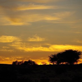 Reisepraxis Namibia
