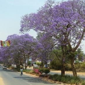 Malawi geht in die Verlängerung