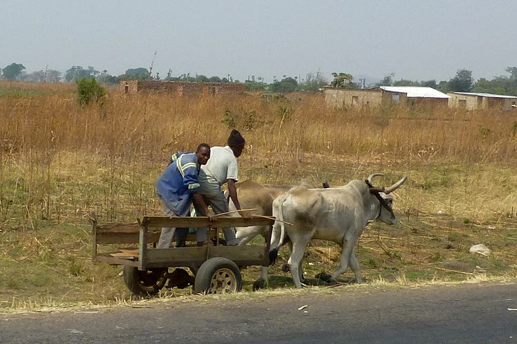 Reisepraxis Sambia