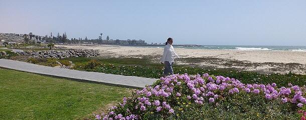 Strandspaziergang in Swakop