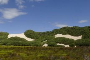 Die Natur hat beeindruckende Muster in die hohen Dünen an der Küste gezaubert.