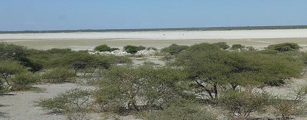 an der Makgadikgadi Salzpfanne