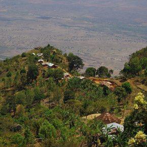 Im Usambara-Gebirge
