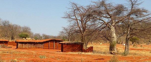 Immer wieder am Wegesrand: Rotbraune Lehmhütten und Baobab-Bäume