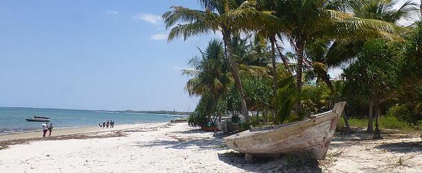 Im Palmenwald direkt am Strand liegt die Bagamoyo Travellers Lodge.