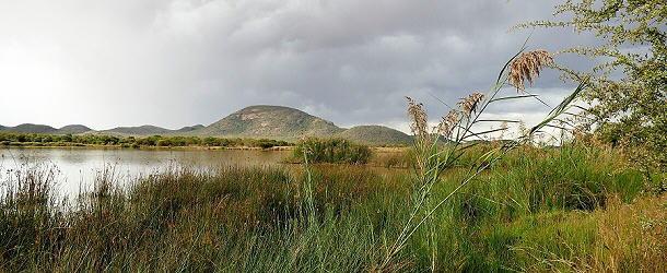 Der Südosten von Botswana ist recht grün und abwechslungsreich.