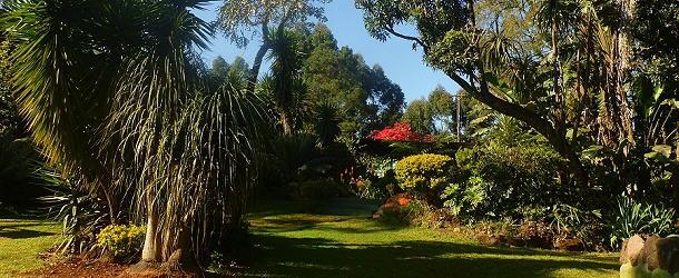 Blick in den Garten Eden vom Campingplatz Ultimate.