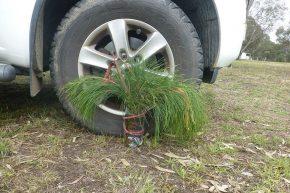 Dagegen nimmt sich unser Weihnachtsgesteck eher bescheiden aus. Mit einigen Spanngurten mussten wir es vor dem Sturm schützen.