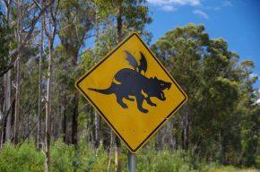 Geflügelte Teufel sind immer mal wieder am Straßenrand zu sehen.