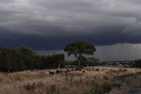 Ab und zu ziehen schwere Gewitter auf...