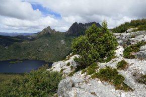 Schroffe Felsen und kristallklare Bergseen bestimmen das Gebiet rund um den Cradle Montain.