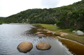 Am Tidal River im Wilsons Promontory Nationalpark.