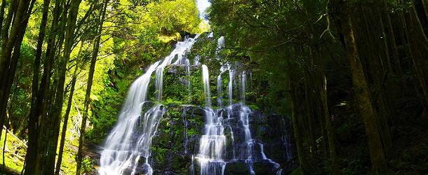 die Nelson Falls in formvollendeter Schönheit