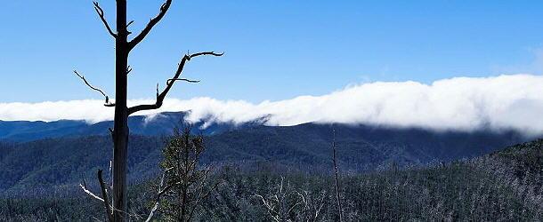Beeindruckend walzt sich der Nebel über den Hauptkamm der Australischen Alpen.