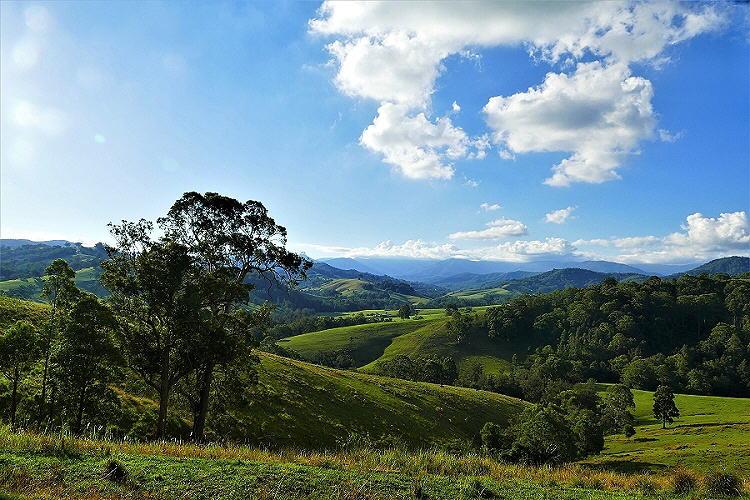 Zwischen Hunter Valley und Central Coast