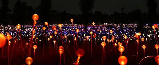 Beeindruckend: Über 300 000 Lampen erleuchten die Fields of Light.