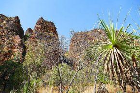 Einen kleinen Vorgeschmack auf die Kimberleyregion gibt es im Keep River Nationalpark nahe der Grenze zu Westaustralien.