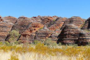 Die Sandsteindome im Purnululu Nationalpark gehören zum Weltnaturerbe.