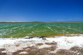 vom Sturm gezeichnet – der Lake Thetis im Nambung Nationalpark.