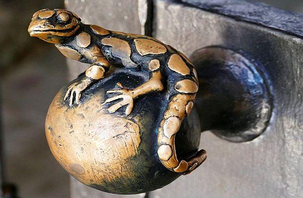 der Frosch vom Heidelberger Schloss