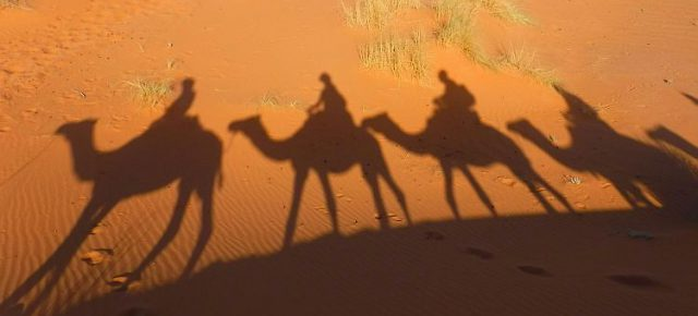 Von den Königsstädten in die Wüste